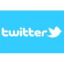 Account Twitter US (Min 30)